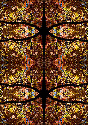 Colorful Button - Fall Leaf Kaleidoscope by Steven Ralser