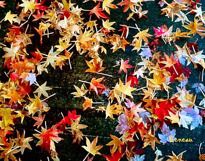Photograph - Fall Leaves 2 by Sadie Reneau
