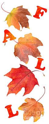 Fall Leaves Art Print by Amanda Elwell