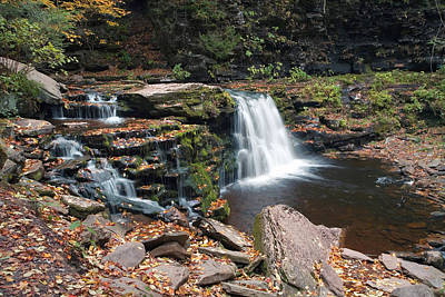 Photograph - Fall Leaves Embellish Cayuga Falls by Gene Walls