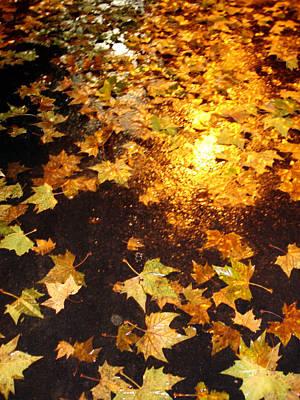 Fall Leaves Art Print by Michel Mata