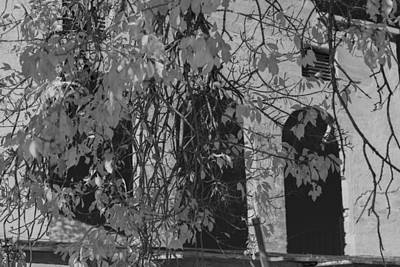 Fall Leaves On Open Windows Jerome Balck And White Art Print by Scott Campbell