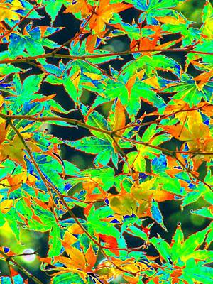 Catch Of The Day - Fall Leaves - PhotoPower 1751 by Pamela Critchlow