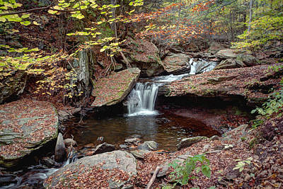 Photograph - Fall Leaves Surround The Unsung Waterfall - Aka Aaron's Cascade by Gene Walls