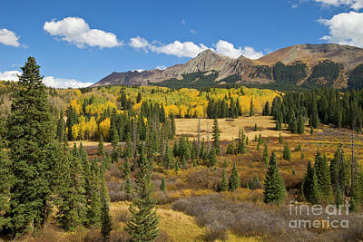Photograph - Fall Meadow Rocky Mountains Colorado by Yva Momatiuk John Eastcott