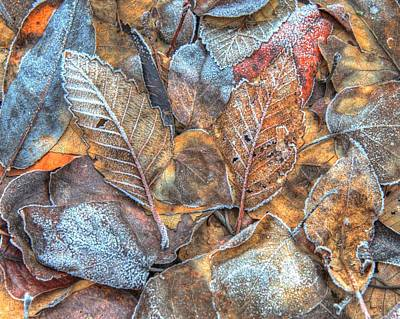 Photograph - Fall Meets Winter by Jeff Cook