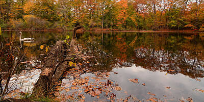 Maple Leaf Art Photograph - Fall Memories by Lourry Legarde