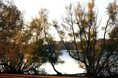 Photograph - Fall Morning At Lake Wright Patman by Amelia Painter