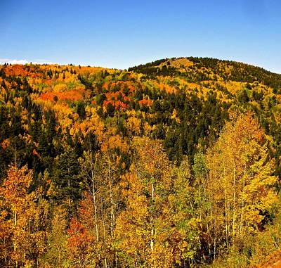 Photograph - Fall Mountain Side by Jeff Gater