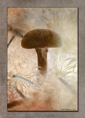 Photograph - Fall Mushroom 5 by WB Johnston