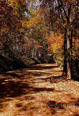 Photograph - Fall On A Dirt Road by Robert Frederick