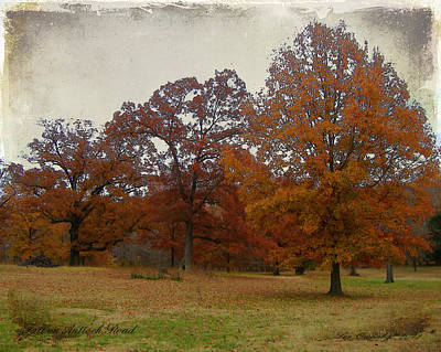 Fall On Antioch Road Art Print