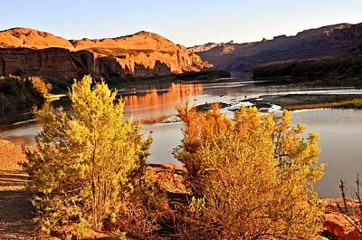 Fall On The Colorado Art Print by Marty Koch