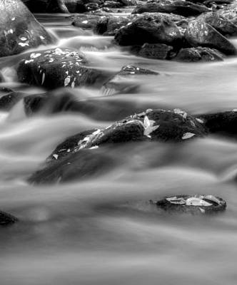 Photograph - Fall On The River In Black And White by Greg Mimbs