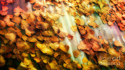 Fall On The Roof Art Print by Bobbi Feasel