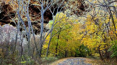 Photograph - Fall Pathway - Solarizzed by Mark C Ettinger