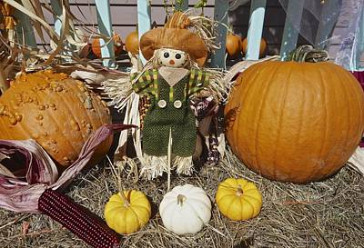 Photograph - Fall Pumpkin Scarecrow by Joan Reese
