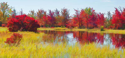 Photograph - Fall Reds Reflection by Beth Sawickie