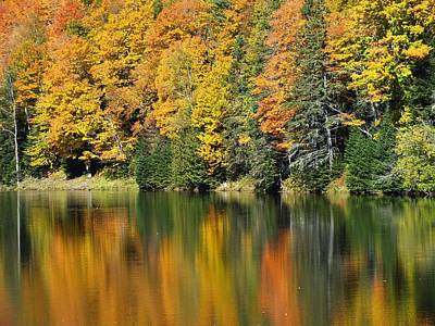 Photograph - Fall Reflected by Gene Cyr