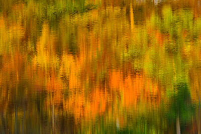 Photograph - Fall Reflection Abstract I by Mark Robert Rogers