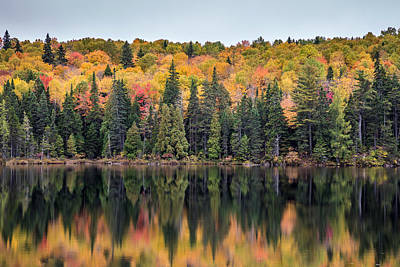 Photograph - Fall Reflection In Quebec by Pierre Leclerc Photography