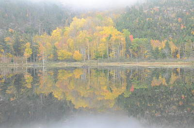 Photograph - Fall Reflection by Michael Gooch