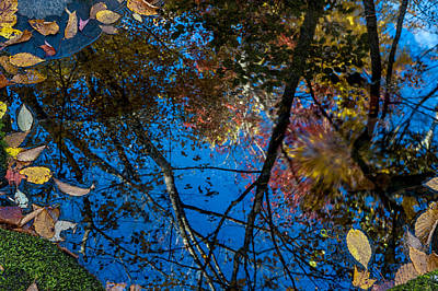 Photograph - Fall Reflection by Tyson and Kathy Smith