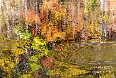 Fall Reflections Original
