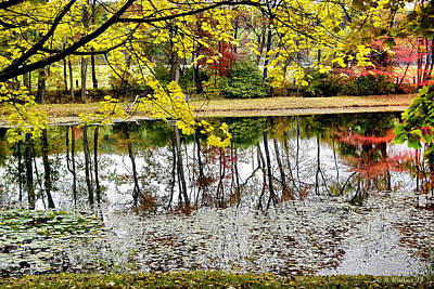 Fall Reflections Art Print by Brian Wallace