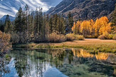 Fall Reflections Art Print by Cat Connor