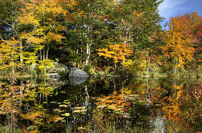 Lakes Photograph - Fall Reflections by Donna Doherty