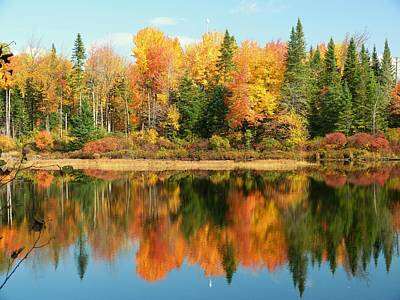 Photograph - Fall Reflections by Elaine Franklin