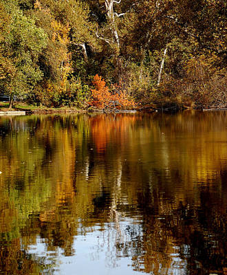 Photograph - Fall Reflections by Holly Blunkall