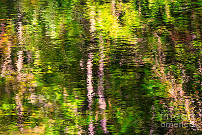 Photograph - Fall Reflections In The Harz National Park by Bernd Laeschke