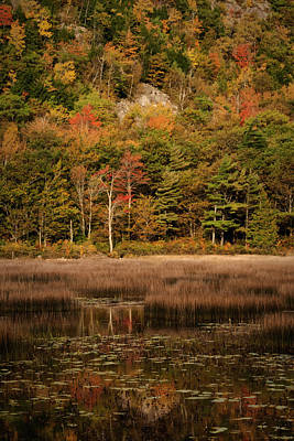 Photograph - Fall Reflections In The Tarn Acadia Np Maine Img 6270 by Greg Kluempers