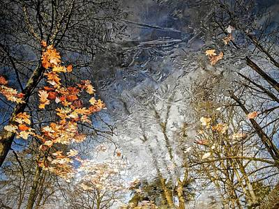 Photograph - Fall Reflections by Joan Reese