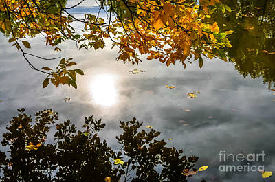 Fort Collins Photograph - Fall Reflections by Baywest Imaging