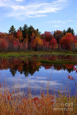 Photograph - Fall Reflections by Kerri Mortenson
