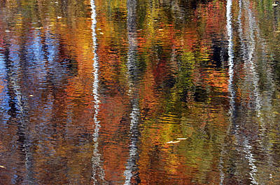 Photograph - Fall Reflections by Minartesia
