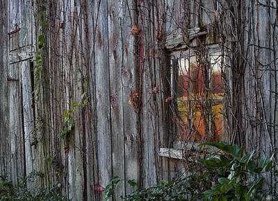 Photograph - Fall Reflections On Weathered Glass by John Vose