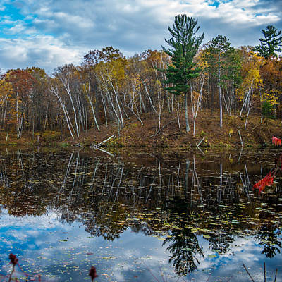 Fall Reflections Art Print by Paul Freidlund