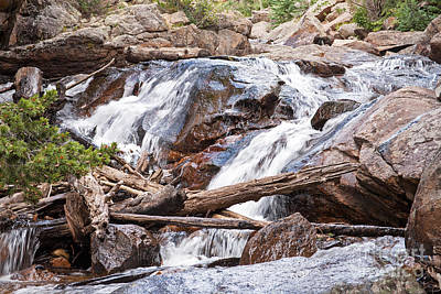 Photograph - Fall River On Fall River Road In Rocky Mountain National Park by Fred Stearns