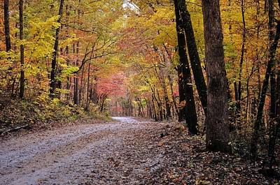 Fall Road Art Print by Marty Koch