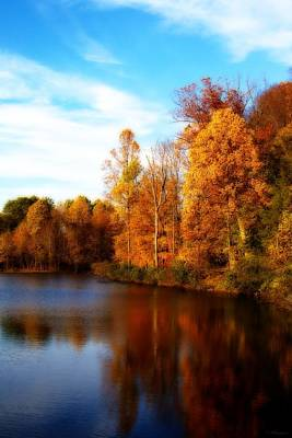 Print featuring the photograph Fall Scene At Hedden Pond With Orton Effect by Eleanor Abramson