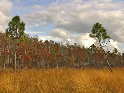 Photograph - Fall Scene II. Three Lakes W.m.a. by Chris  Kusik