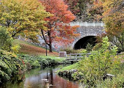 Photograph - Fall Scene Of Town Brook by Janice Drew