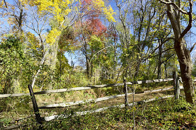 Pennypack Photograph - Fall Scenic Pennypack Ecological Trust Montgomery County Pennsyl by A Gurmankin