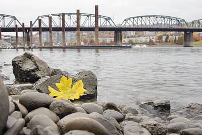 Outdoors Photograph - Fall Season Along Portland Willamette River By Marina by David Gn