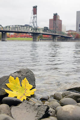Outdoors Photograph - Fall Season Along Willamette River Portland Oregon by David Gn