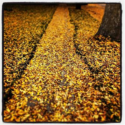 Fall Sidewalk Original by Jeff Klingler